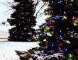 zylstra-christmas-lights-p3