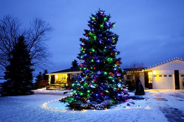 zylstra-christmas-lights-12