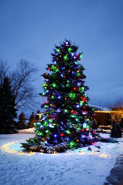 zylstra-christmas-lights-p5