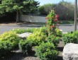 Island Garden Plantings by Zylstra Landscaping