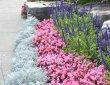 annual-garden-by-zylstra