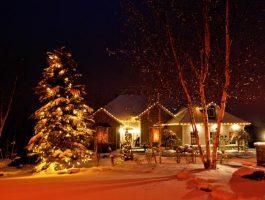 zylstra-christmas-lights-3