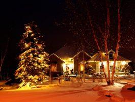 zylstra-christmas-lights-6